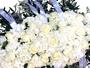 Flower Shop Florist Wellington - Flowers in Wellington