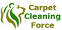 Carpet Cleaning Force