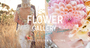 Flower Gallery on Waiheke Island